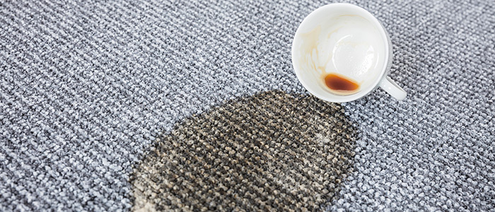 Carpet Cleaning Robina - Gold Coast- DIY Carpet Cleaning Or Hire a Professional
